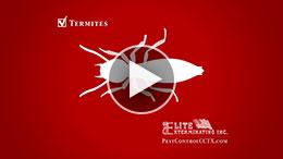 Commercials-Thumbnail