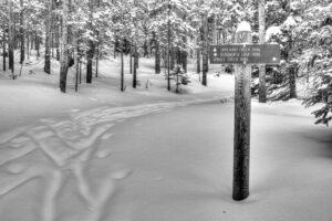 xc ski Tipperary trail by Jeff Russell ©