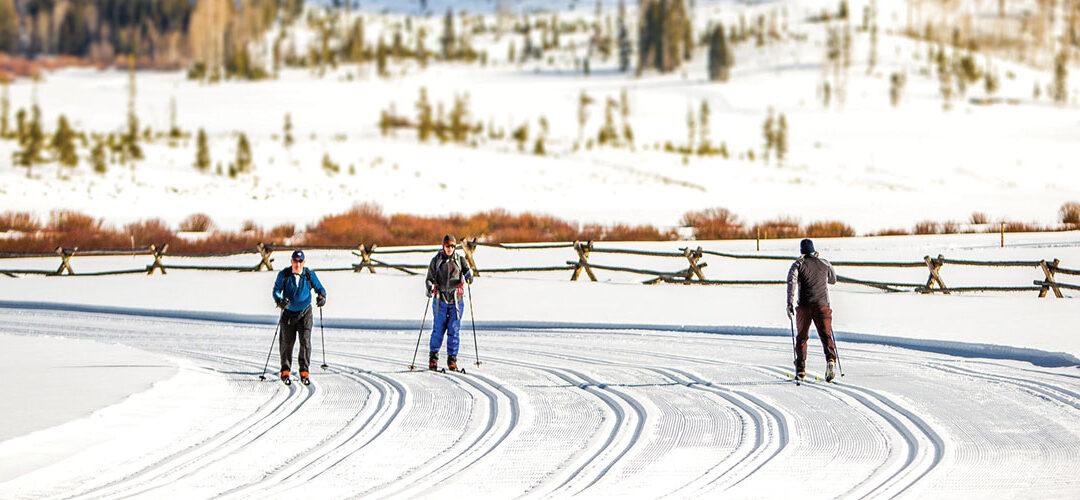 xc ski trails at Devils Thumb