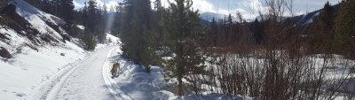 The Off-Track Ski Report – 12/22/2020