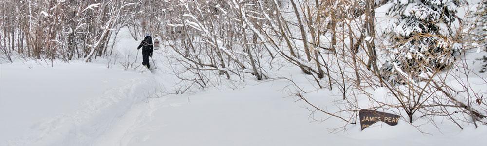 Powder XC Skiing!