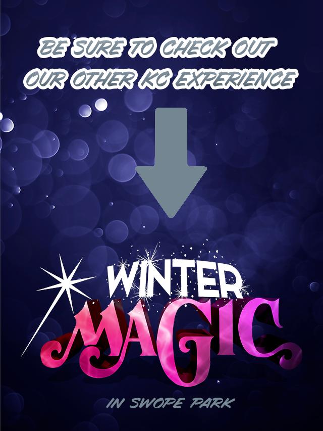 Winter magic swope park