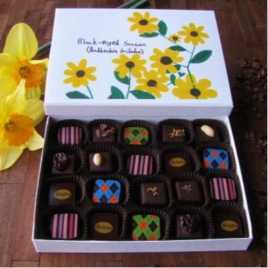 Bellafina Chocolates Young Artist Wildflower Series Black Eyed Susan