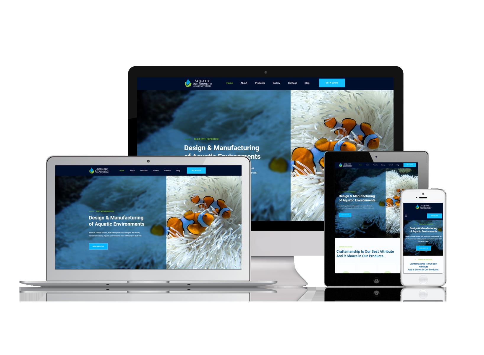 AEM Website