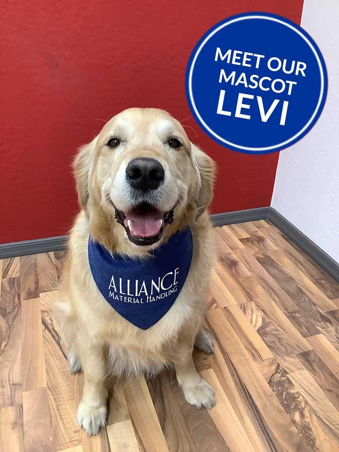 Meet Levi