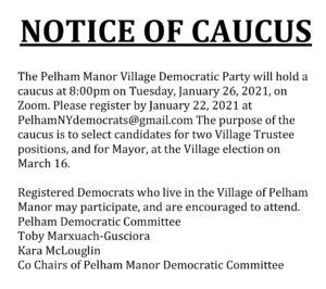 Pelham Manor Democratic Caucus @ Zoom