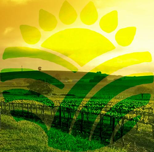Online tool assists specialty crop growers, applicators