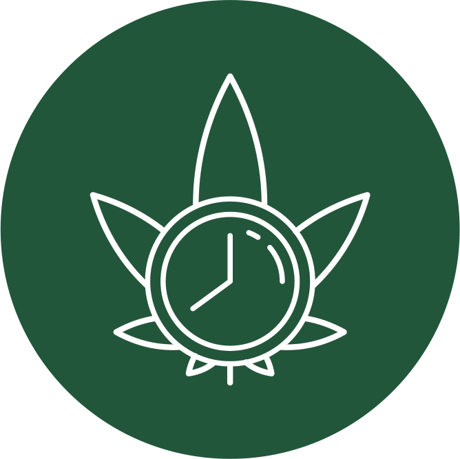 Dry Cannabis Faster