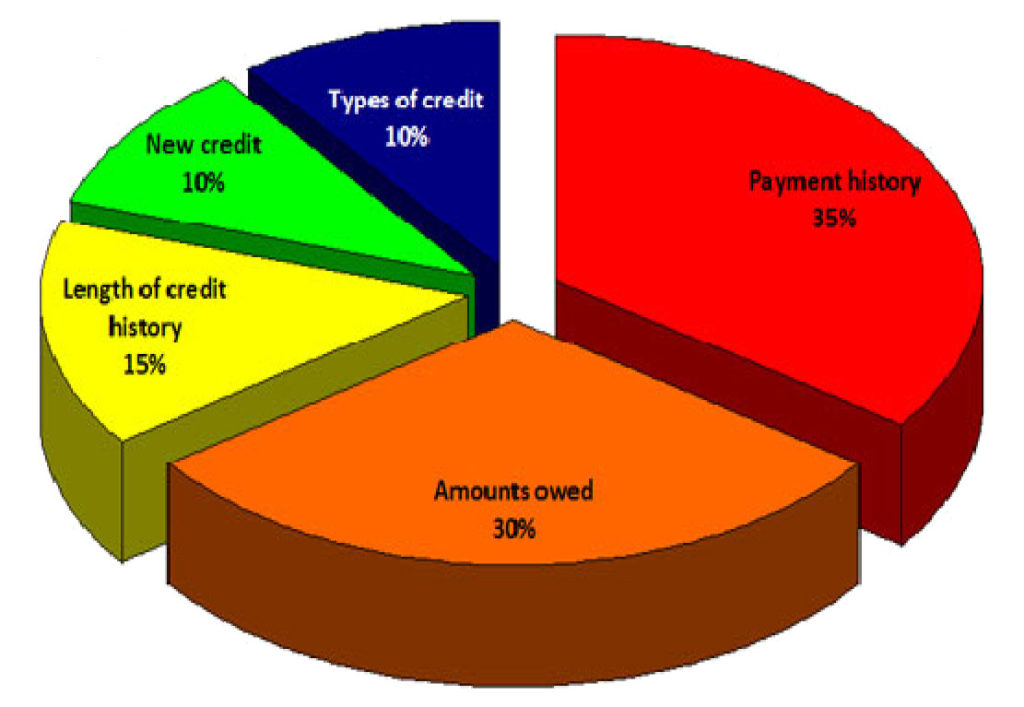 First Time Home Buyer Bad Credit Score Pie Chart