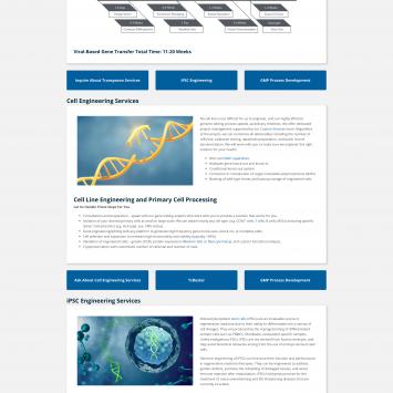 Gene-Engineering-Services
