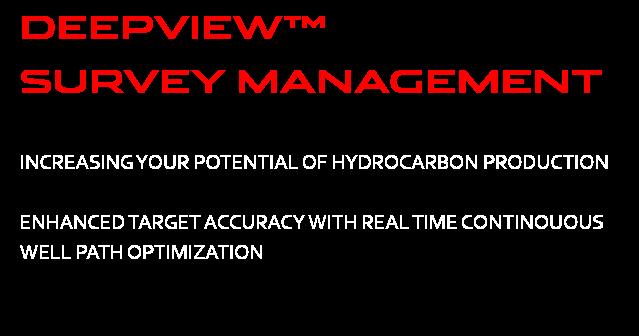 DEEPVIEW SURVEY MANAGEMENT WORDING WHTIE