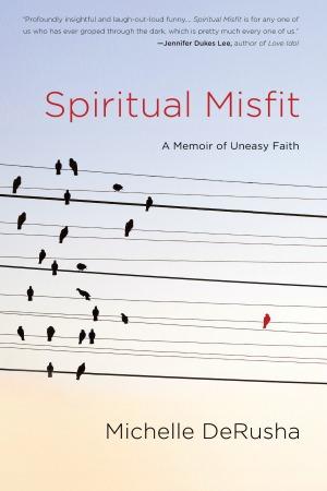 MichelleDeRusha_Spiritual Misfit