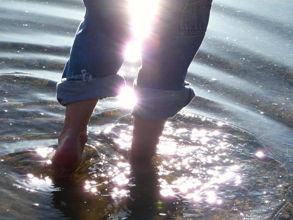 Rowan in water