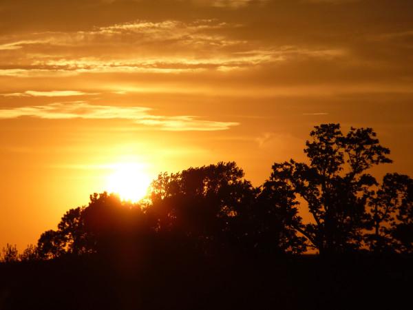 Nebraska plains sun