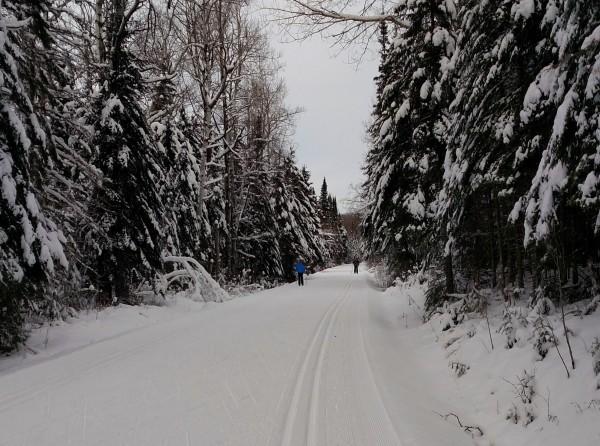 cross country ski trail 3