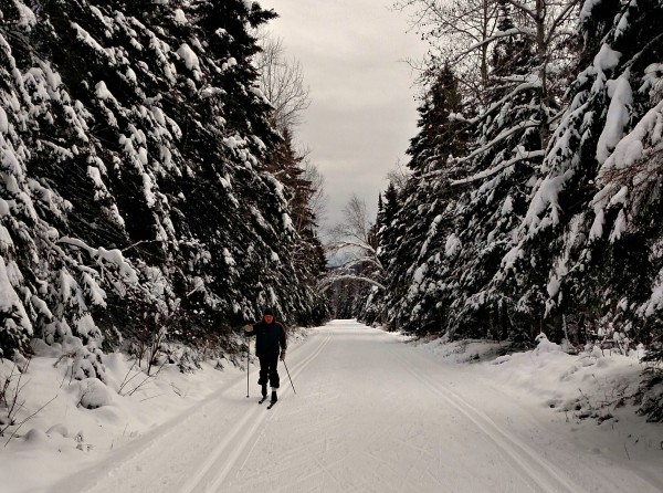 cross country ski trail 4
