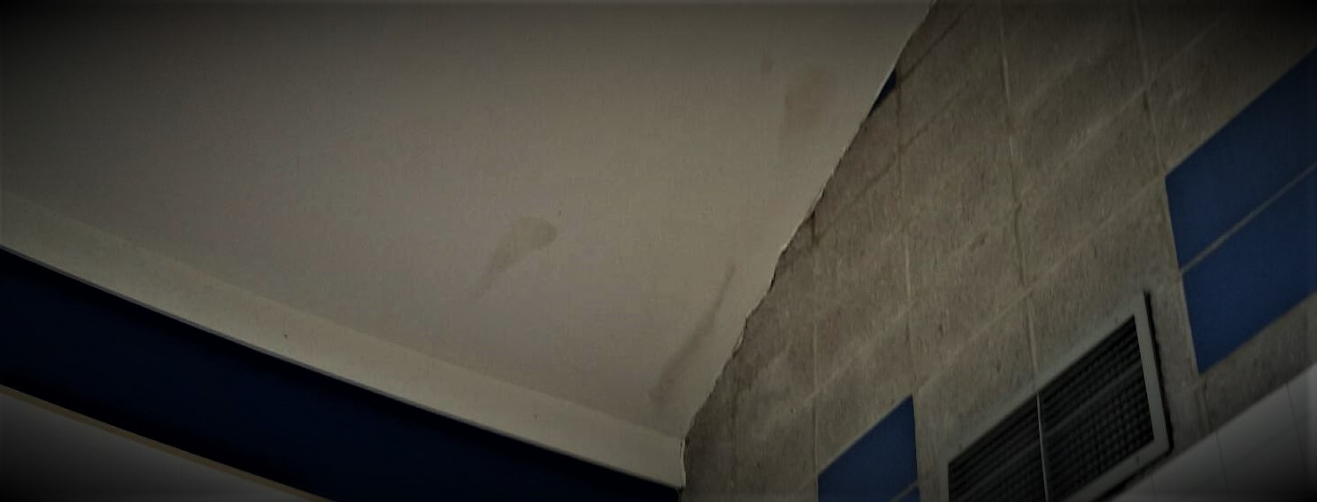Learn to Spot a Leak In Your Flat Roof | Property Management Tips