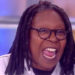 Whoopi banner pic