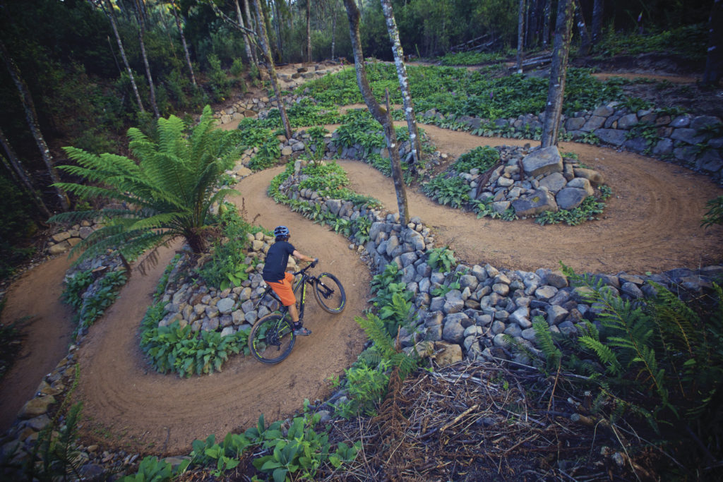 Image Courtesy of Tourism Tasmania & Supplied Courtesy of Flow Mountain Bike All Rights Reserved