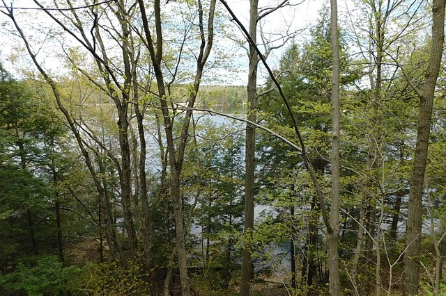 Cheese Factory Lane Lot 1, South Frontenac, Loon Lake, Ontario, Gurreathomes.com