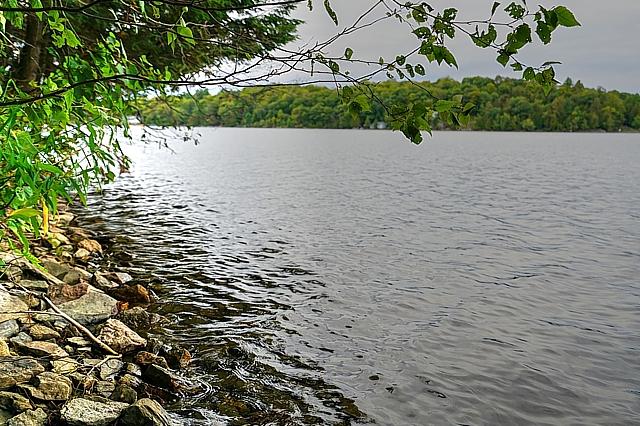 Farren Lake Lane 31, Farren Lake, South Sherbrooke, Perth, Ontario, Gurreathomes.com