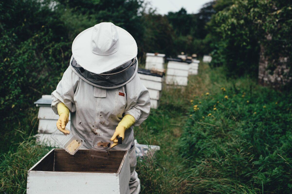 Benefits-of-Honey-1-1200x799.jpg