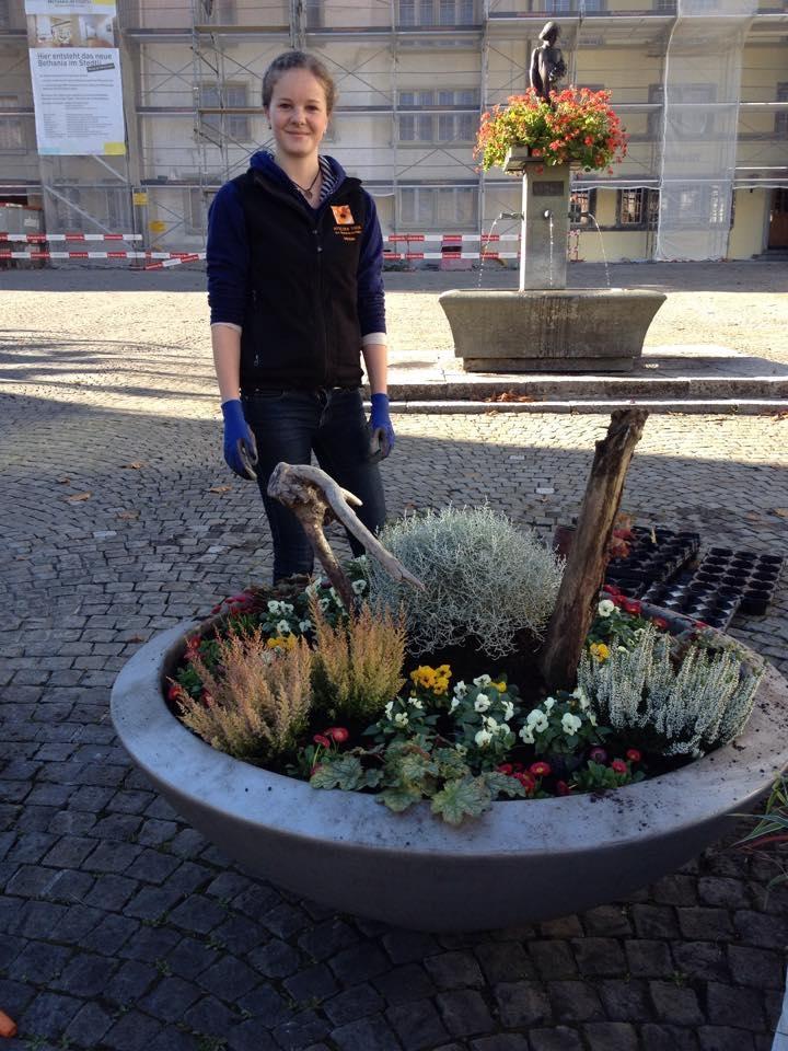 Winterschalen Blumen Unterseen/Interlaken