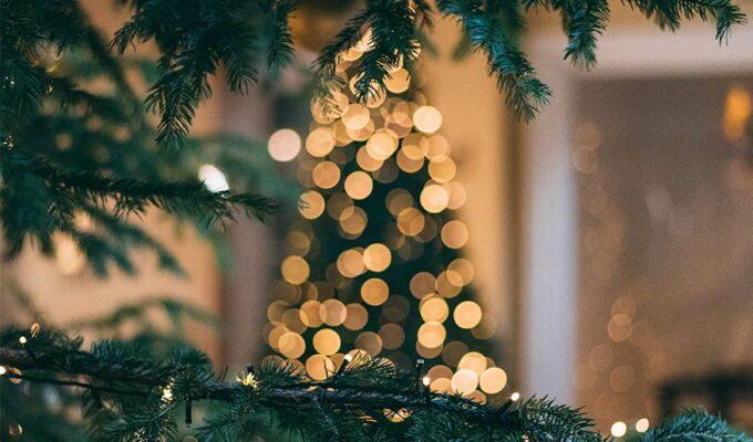 """""""Holiday lights"""""""
