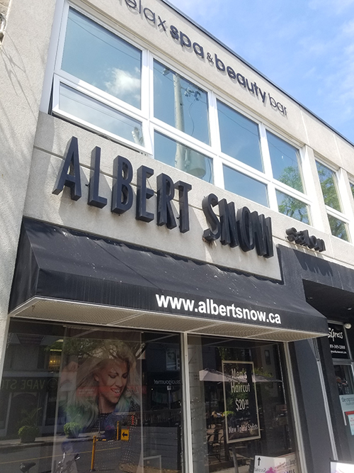 Albert Snow Hair Design Group