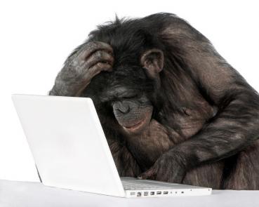 monkey_computer