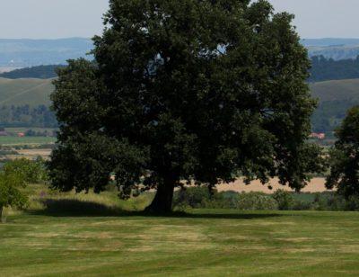 Golf Club Paul Tomita, Romania