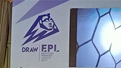 Egyptian League Logo