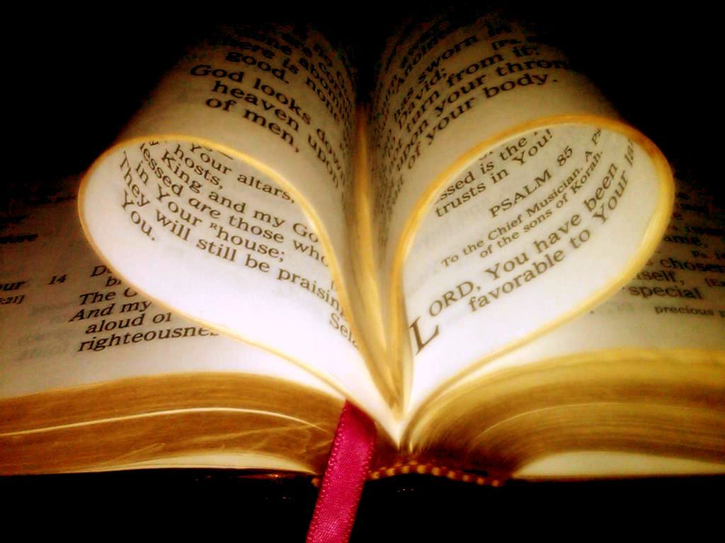 Scriptures on Leadership: Renewing Action