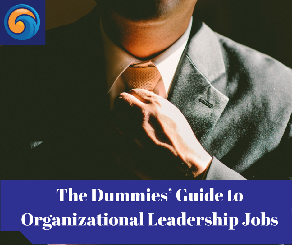 The Dummies' Guide to Organizational Leadership Jobs