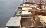soybean exports Argentina Brazil
