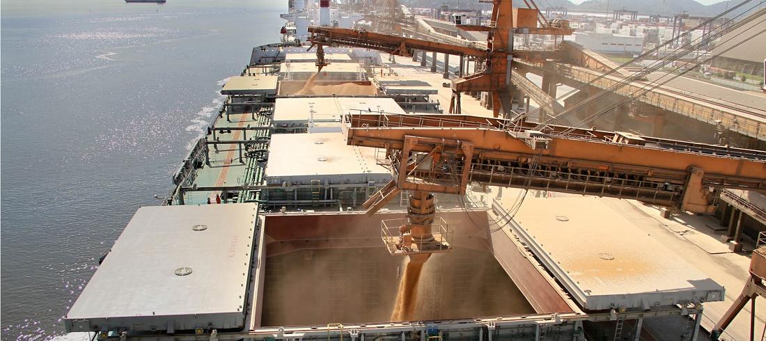 exportações de soja da Argentina
