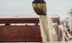 Exportações brasileiras de açúcar