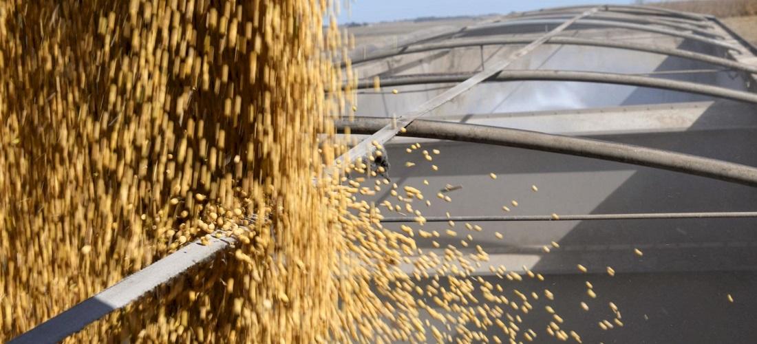 Brasil exportação soja - brazilian soybean exports
