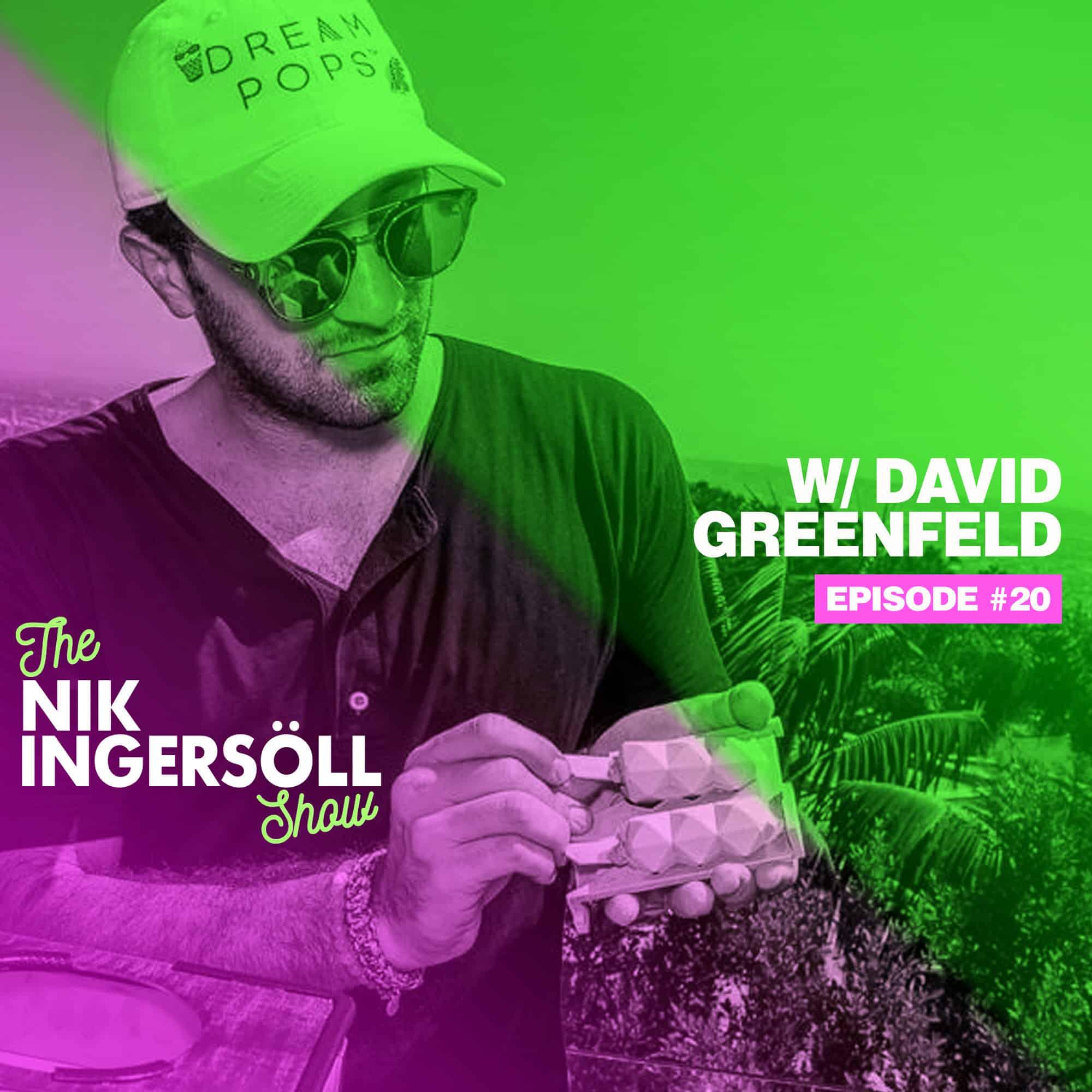 #20: David Greenfeld – Dream Pops – (Podcast) The Nik Ingersoll Show