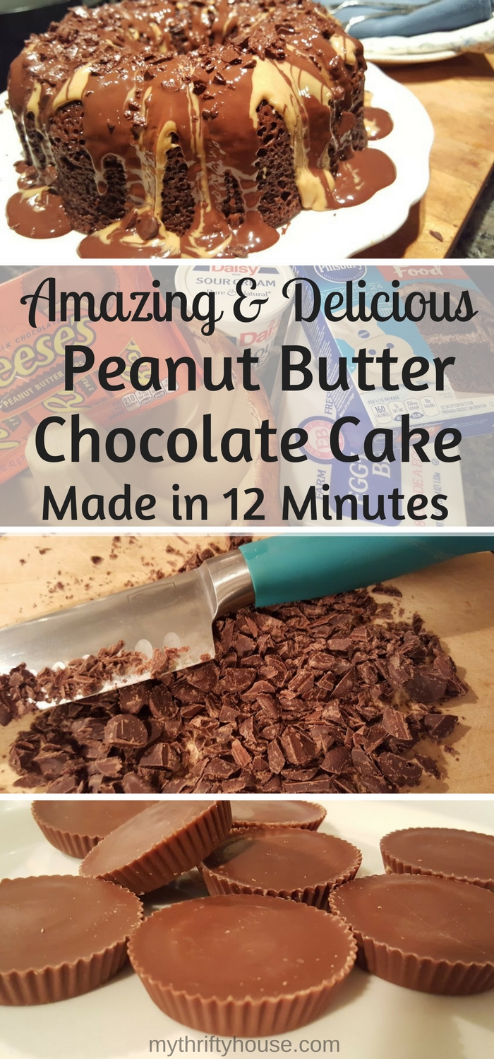 12-minute-chocolate-peanut-butter-bundt-cake-made-in-the-microwave