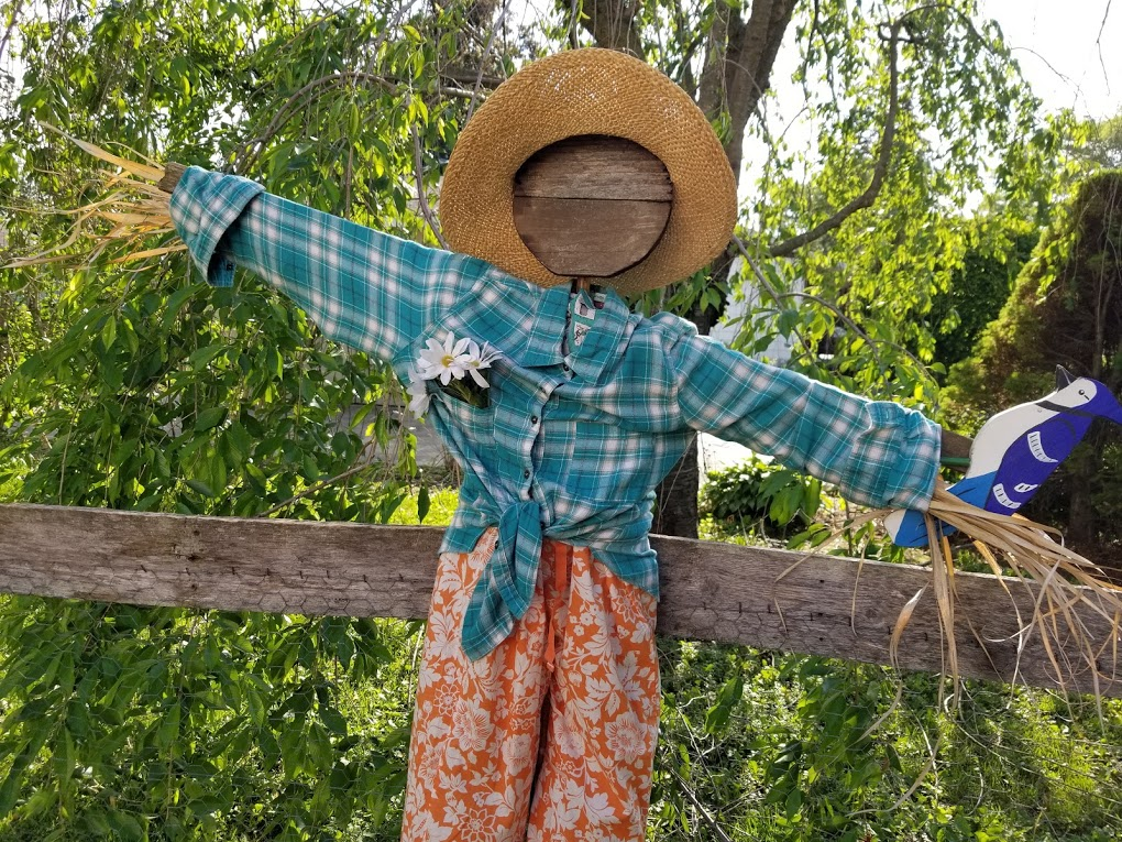 How To Make A Cute Garden Scarecrow My Thrifty House