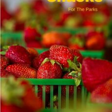 Healthy and easy snacks for the parks