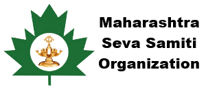 msso-logo-name