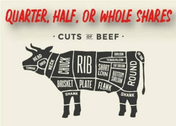 Grass Fed Beef shares quarter, half, or whole from taysita ranch