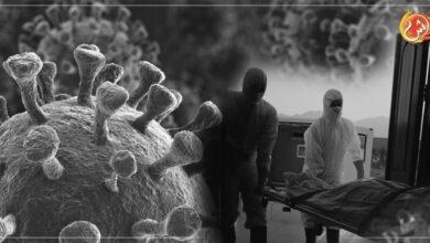 صورة العدد الأكبر من وفيات كورونا سُجلت في السيب .. مطرح .. صحار