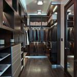 25 Best Contemporary Storage & Closets Designs