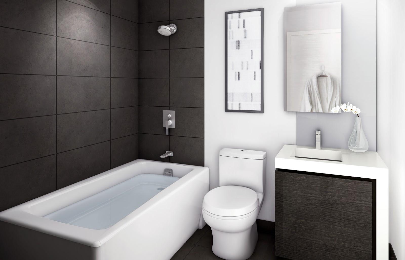 bathrooms-designs-dna-bathroom-designs-ideas