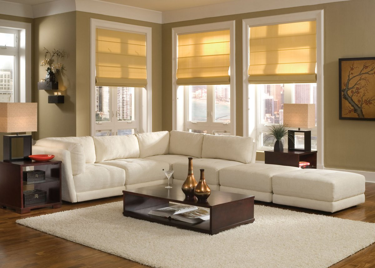 modern-cozy-living-rooms