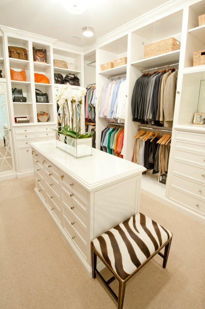 rubbermaid-closet-design-Closet-Traditional-with-built-in-storage-ceiling-lighting-island-storage-baskets-walk-in-closet-zebra