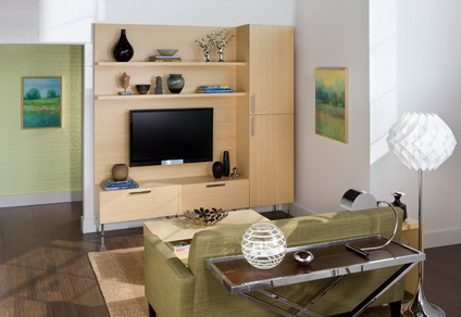 Small-Sofa-in-Small-Modern-Living-Room-Interior-Decorating-Designs-Ideas